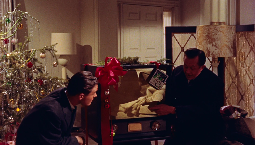 (2) All That Heaven Allows (Douglas Sirk, 1955)